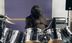 cadburys-gorilla
